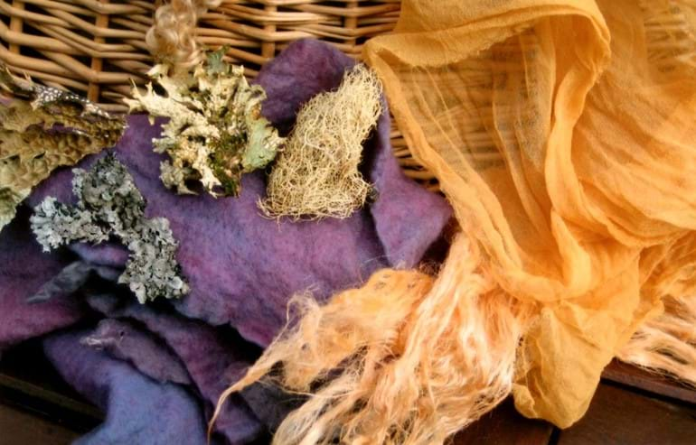 Plant Dyeing: Colours of Scotland